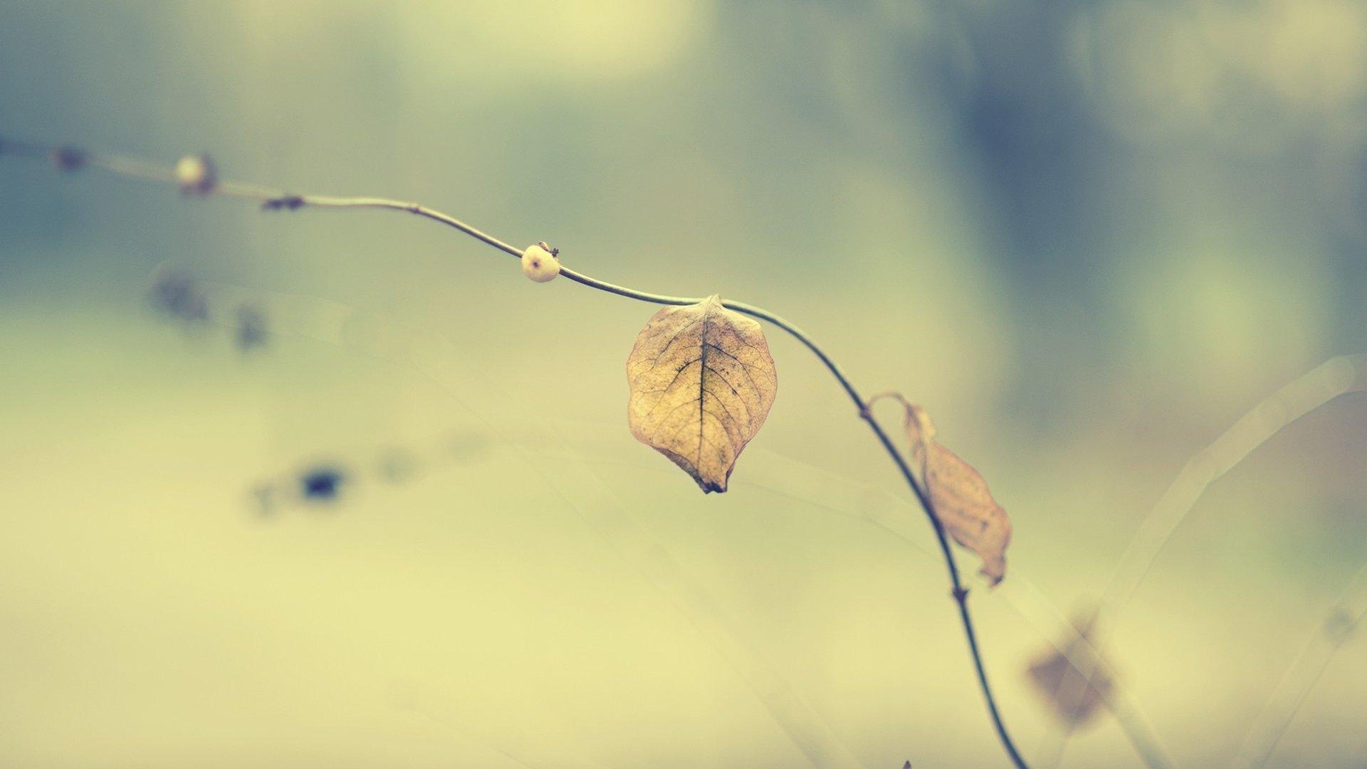 我们相遇就是一个错误感悟爱情的心酸情感语录说说
