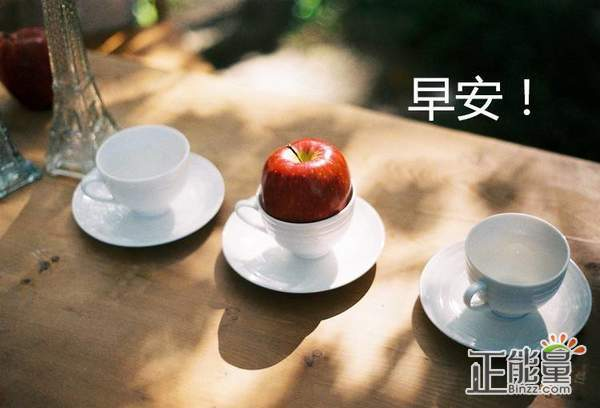 2019早安正能量心语励志语录大全