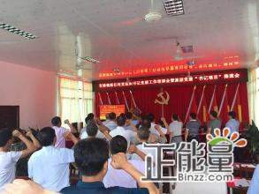 村党组织书记述职报告材料精选2篇