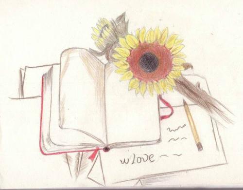 关于我和书的故事小学生作文800字欣赏
