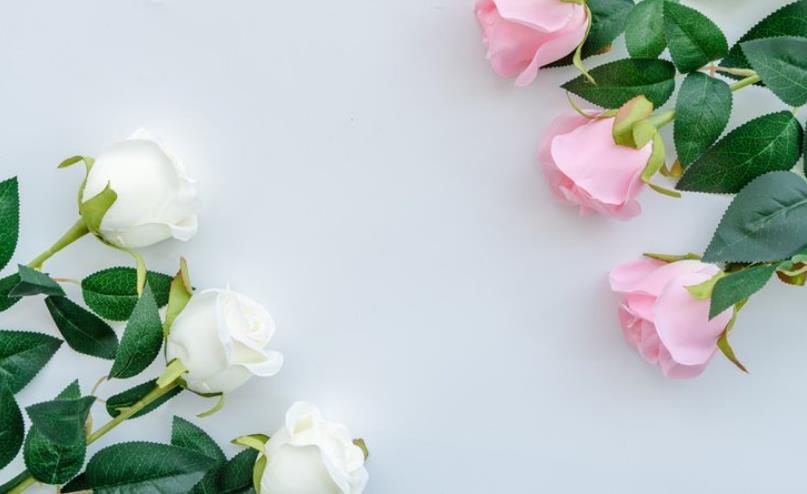 关于爱情的故事欣赏:爱情会在你意想不到的情况下出现