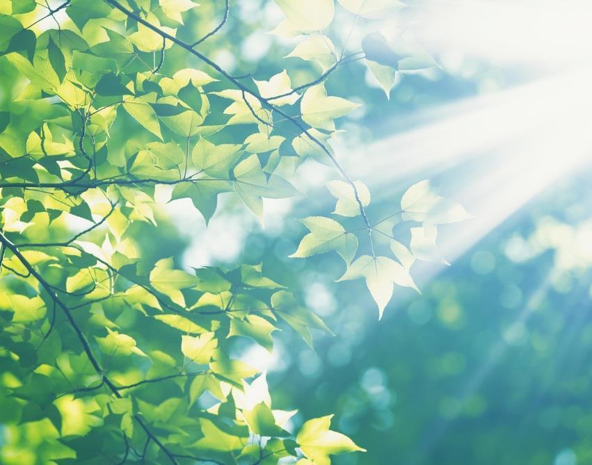 充满阳光正能量的励志语录说说:为了自己,不负此生