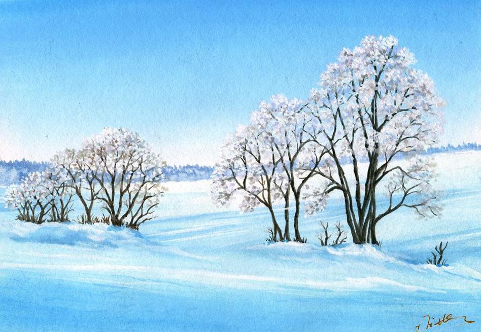 关于冬雪的感悟散文欣赏:拒绝,也是一种美丽