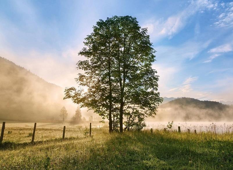 向往美好生活的说说句子感悟语录:平凡也是一种幸福