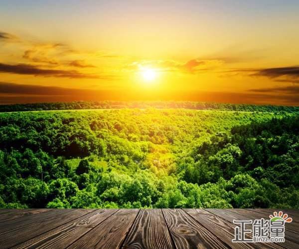 早安奋斗正能量的句子说说:自己强大才是真正的强大