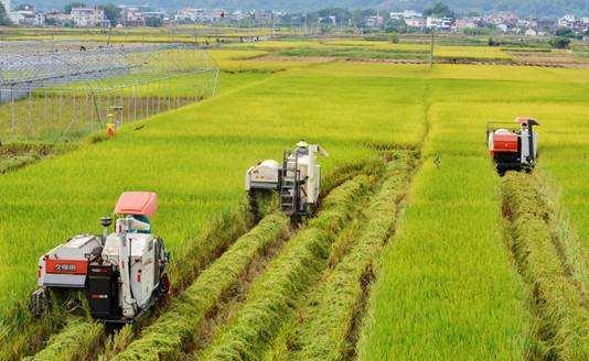 2018年现代农业发展情况调研报告范文精选6篇