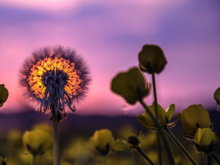 活出精彩的自己正能量心情语录:不要忘记最初的自己