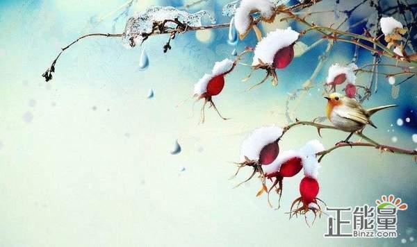描写冬天的抒情散文:交错的目光