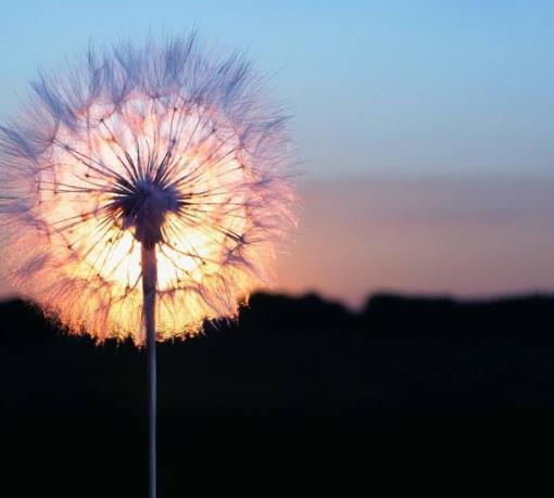 感叹人生无奈的心情说说经典语录:你想要的,时光都会给你