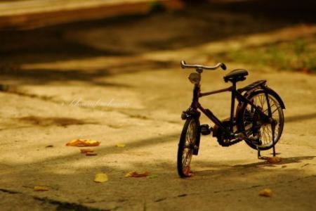 描写时光的抒情散文美文欣赏:在时光的笔尖上行走