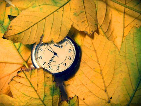 愿时光善待我们的句子心情说说:时间可以冲淡一切