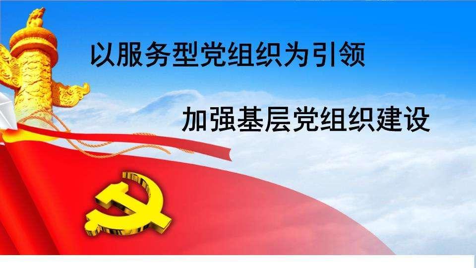 党组织书记2018年度述职报告