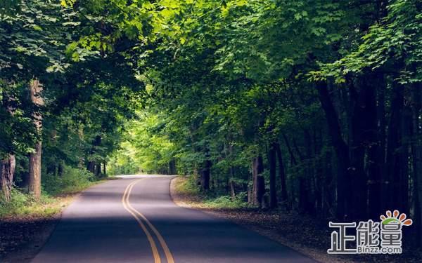 珍惜眼前活在當下的生活感悟語錄:回想初心,明天會好的