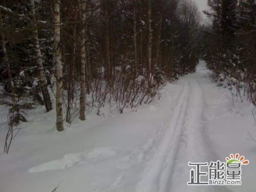 在雪中迷路抒情散文美文欣赏