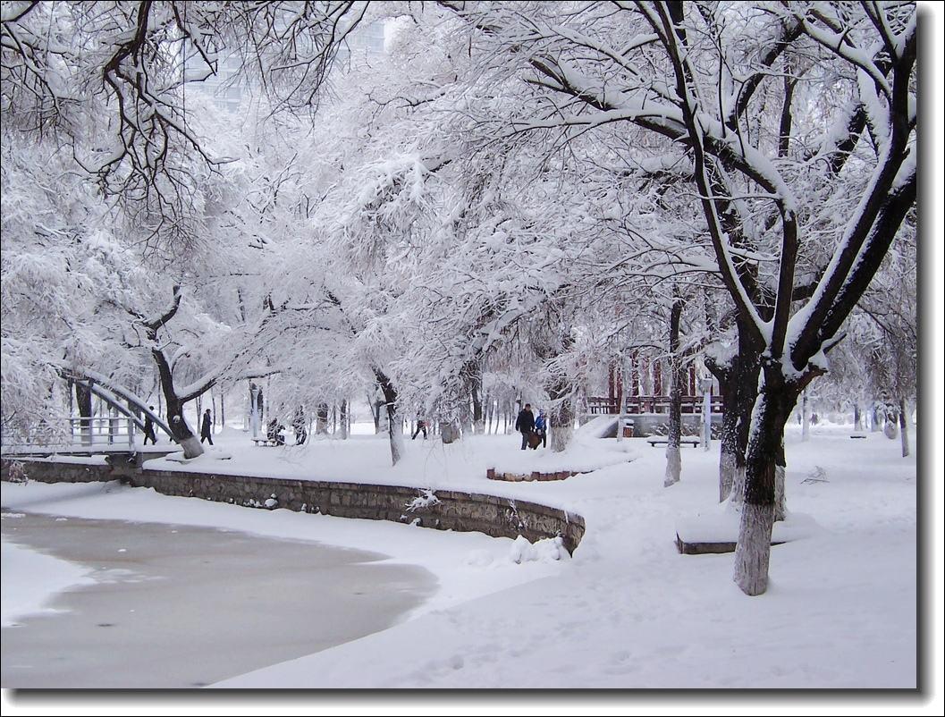 飘雪的时节来看你随笔美文散文欣赏