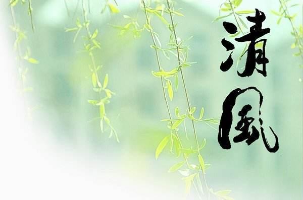 2018清风干部闫佳先进事迹材料宣传
