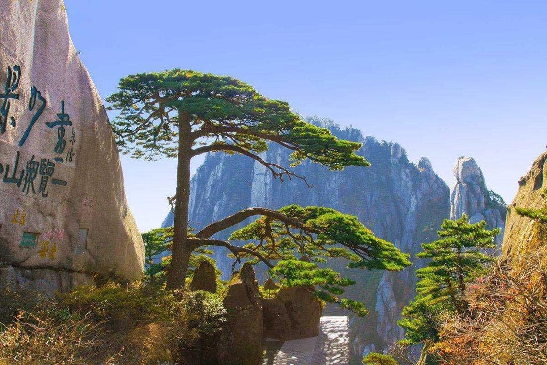 最新景物描写作文:游黄山