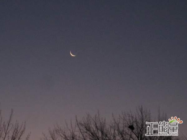 关于冬天的月亮随笔美文散文欣赏