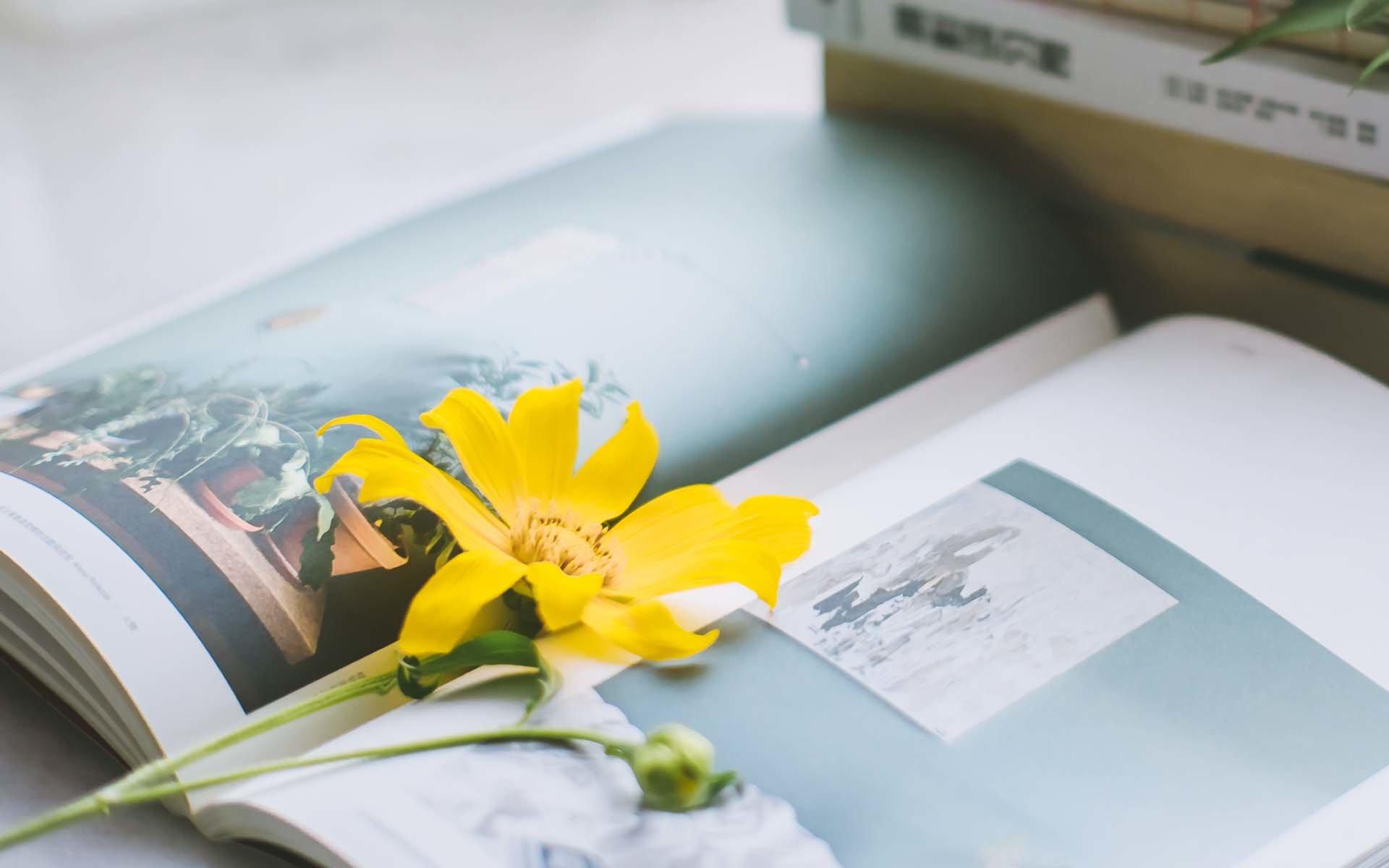 感慨生活不容易现实又很扎心的句子说说:愿你苦尽甘来终有日