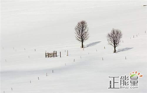 关于大雪的优美散文欣赏