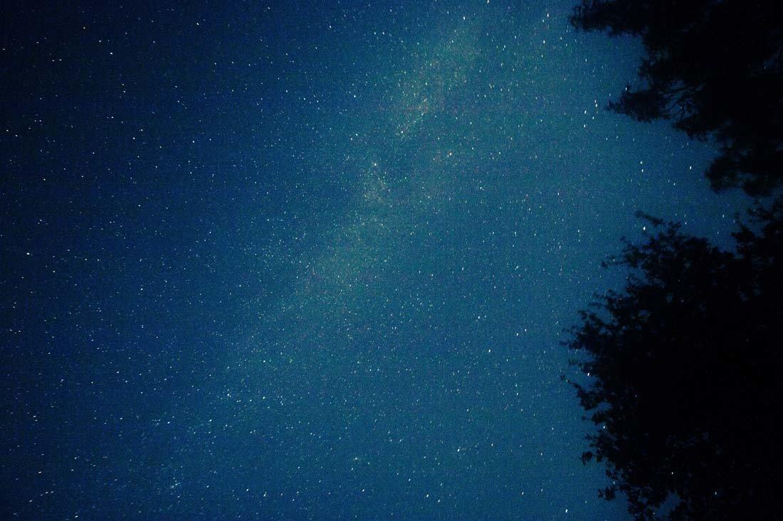 睡前情感晚安心语一句话:以前打扰了,以后不会了