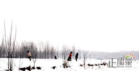 关于家乡的雪优美随笔散文欣赏