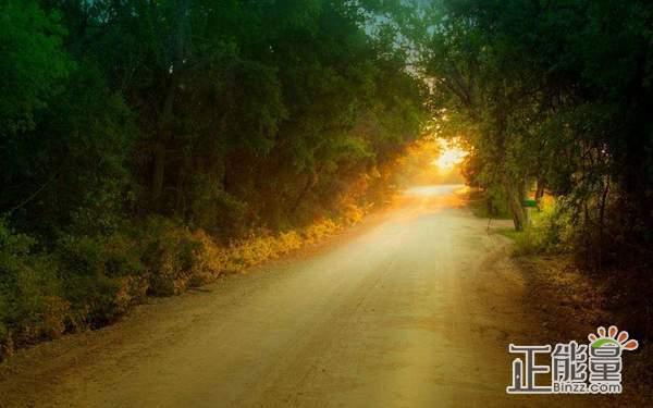 生活充满阳光正能量的句子说说:打不死你的只会让你更强大