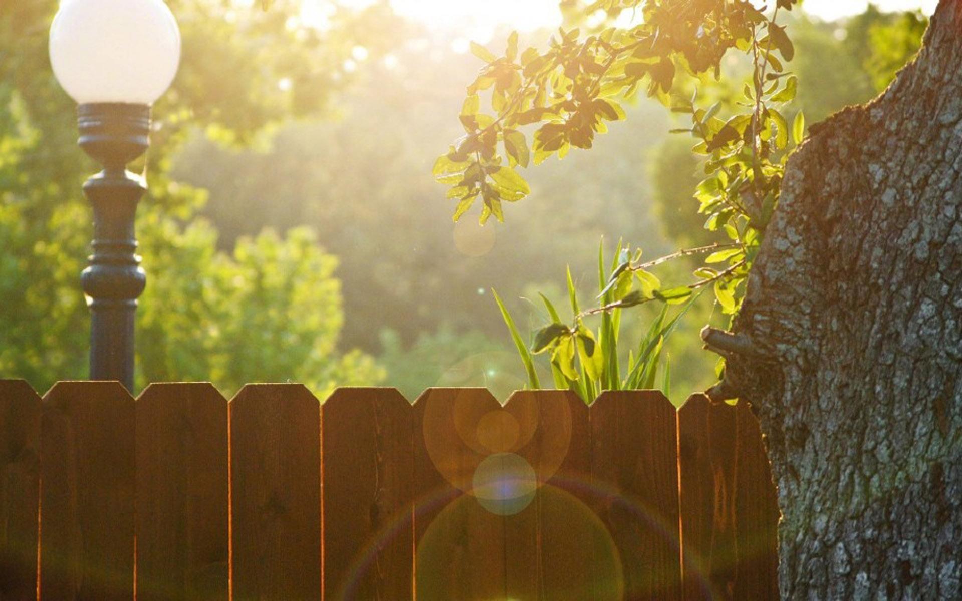 朋友圈早安励志语录正能量说说:人生没有退路只有前进