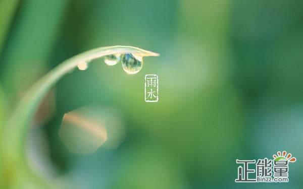 2019雨水节气祝福语大全
