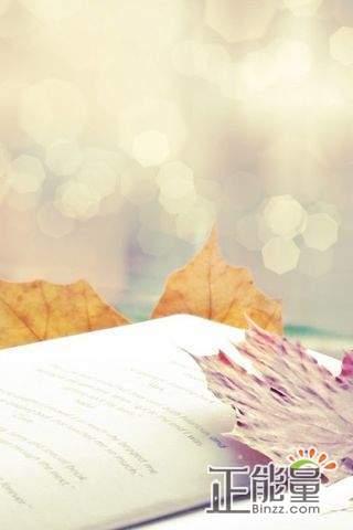 你要如何衡量你的人生讀后感2000字