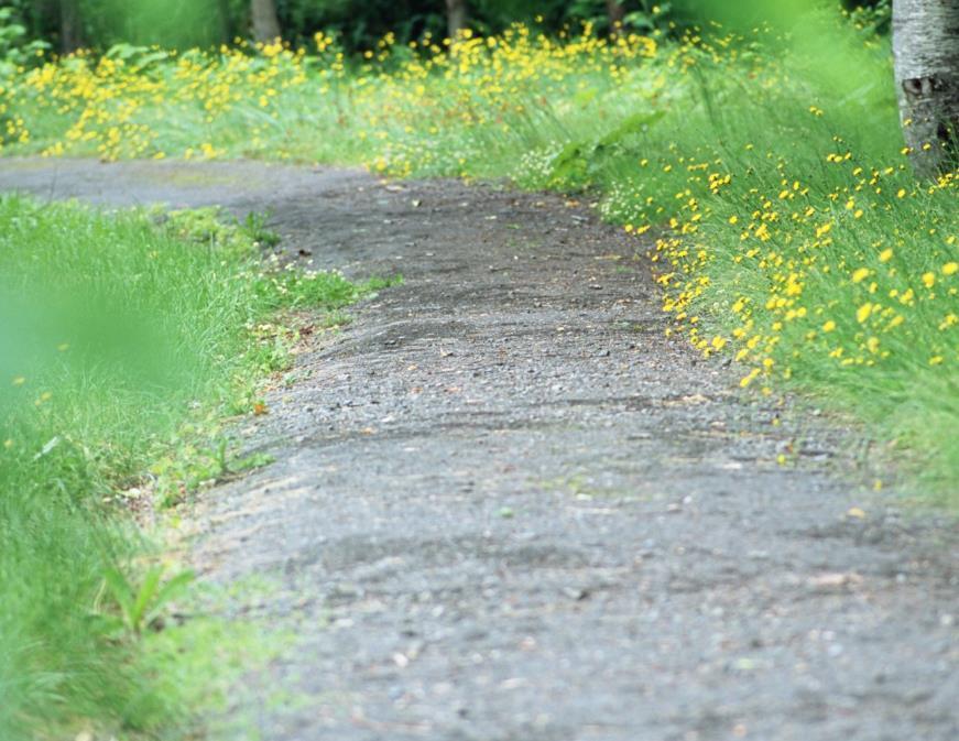 一直在路上的心情说说语录:成长不一定是失去,也可能是离去
