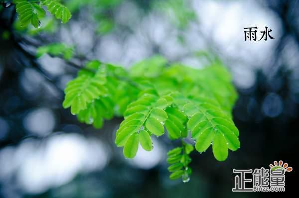 2019雨水节气养生祝福语短信问候语澳门威尼斯人在线娱乐
