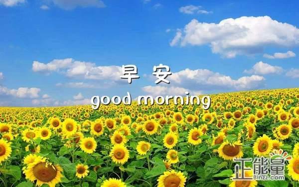 早安正能量激励人心的句子说说大全