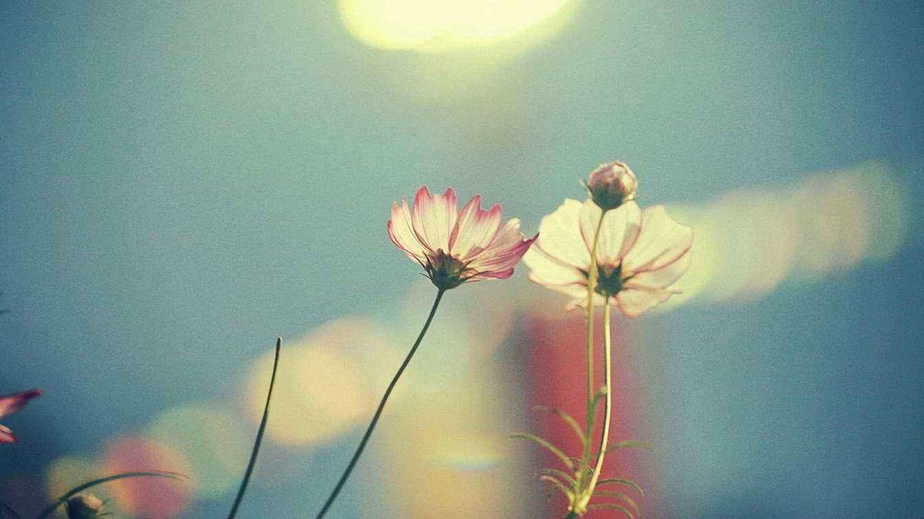 人生迷茫坚持到底的心情说说:始终要记得相信自己