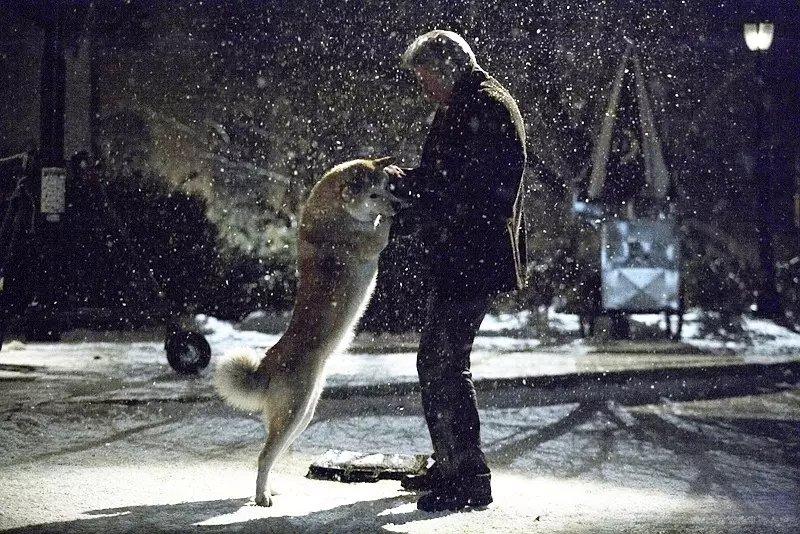 忠犬八公观后感澳门金沙国际