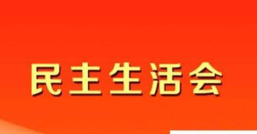 2019公司党委委员民主生活会个人对照检查材料模板