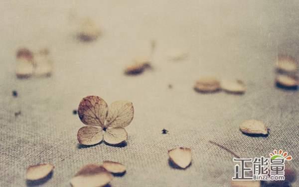 我会学着放弃你qq空间爱情伤感说说大全