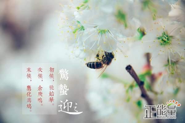 2019惊蛰祝福语简短暖心关怀问候短信大全精选