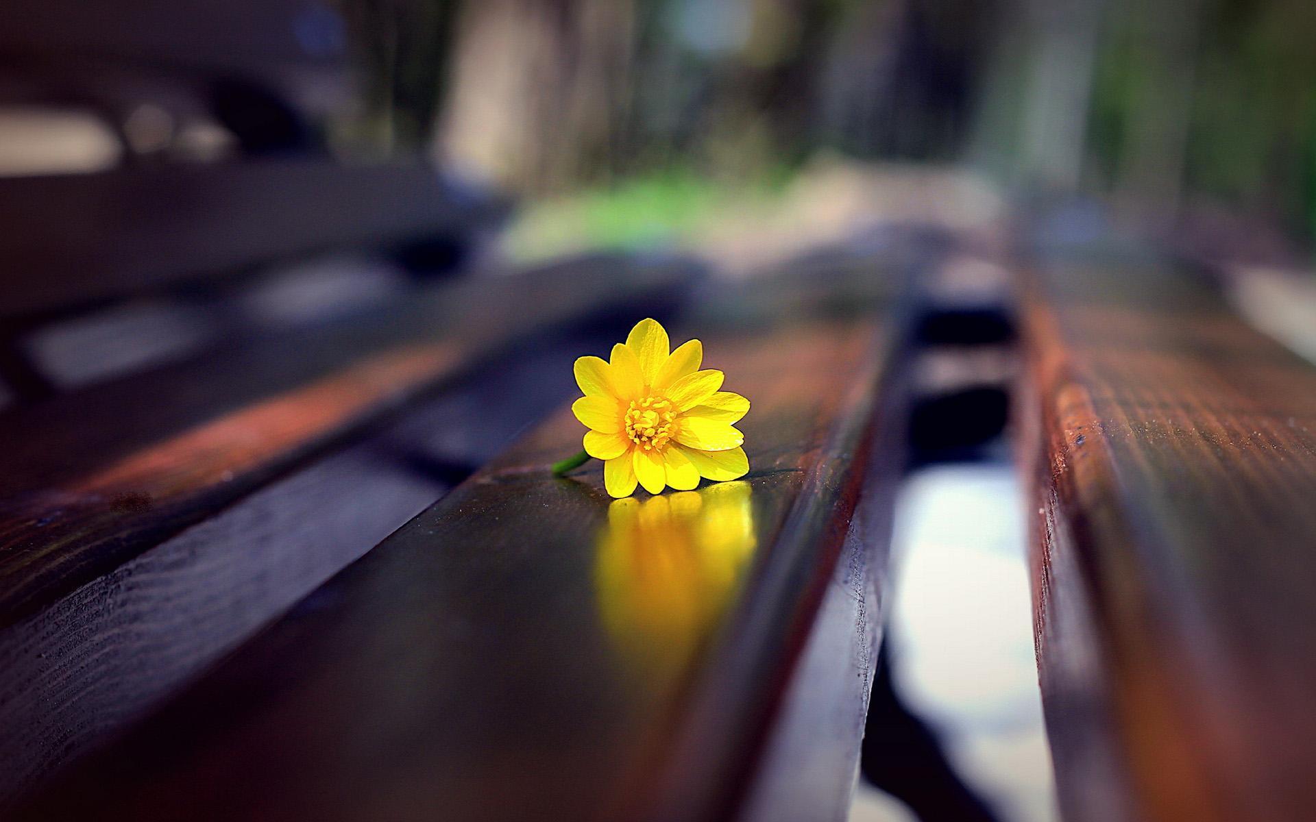 学着放手的说说心情语录:愿意等你,只因为那个人是你