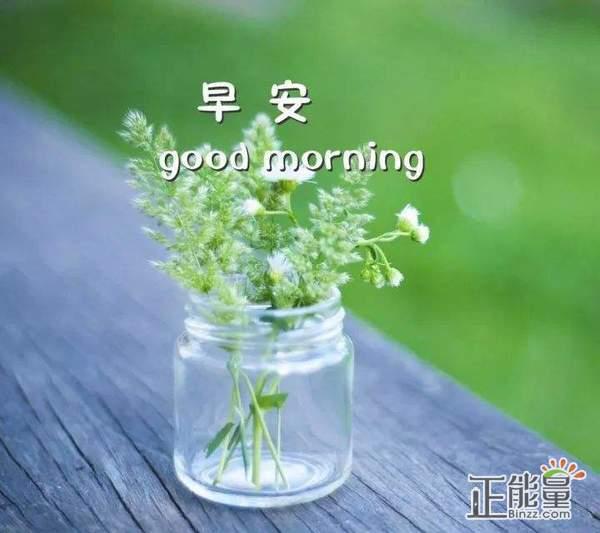早安正能量简单一句话走心温馨语录大全