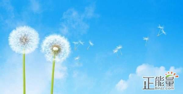 逆风飞翔决不投降为梦想坚持的正能量励志说说大全