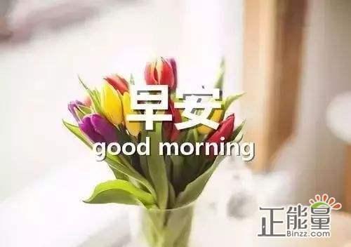 早安正能量简单一句话早安心语唯美句子大全