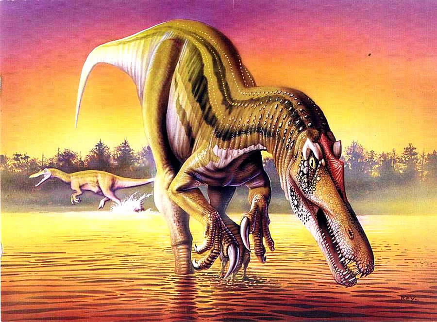 沉没的恐龙读后感400字