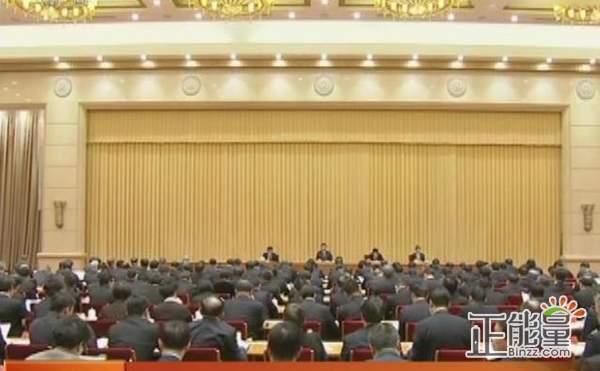 习总书记中央政法工作会议重要讲话精神学习心得体会