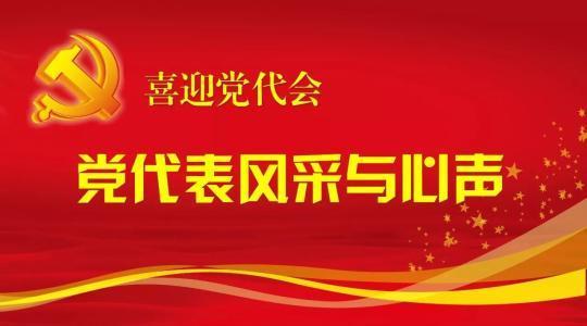 优秀党代表杨静同志先进事迹材料宣传