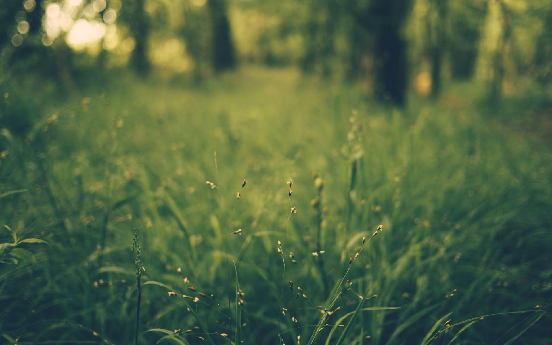 追寻美好生活的感悟生活语录:我知道我心里的太阳不会再离开了