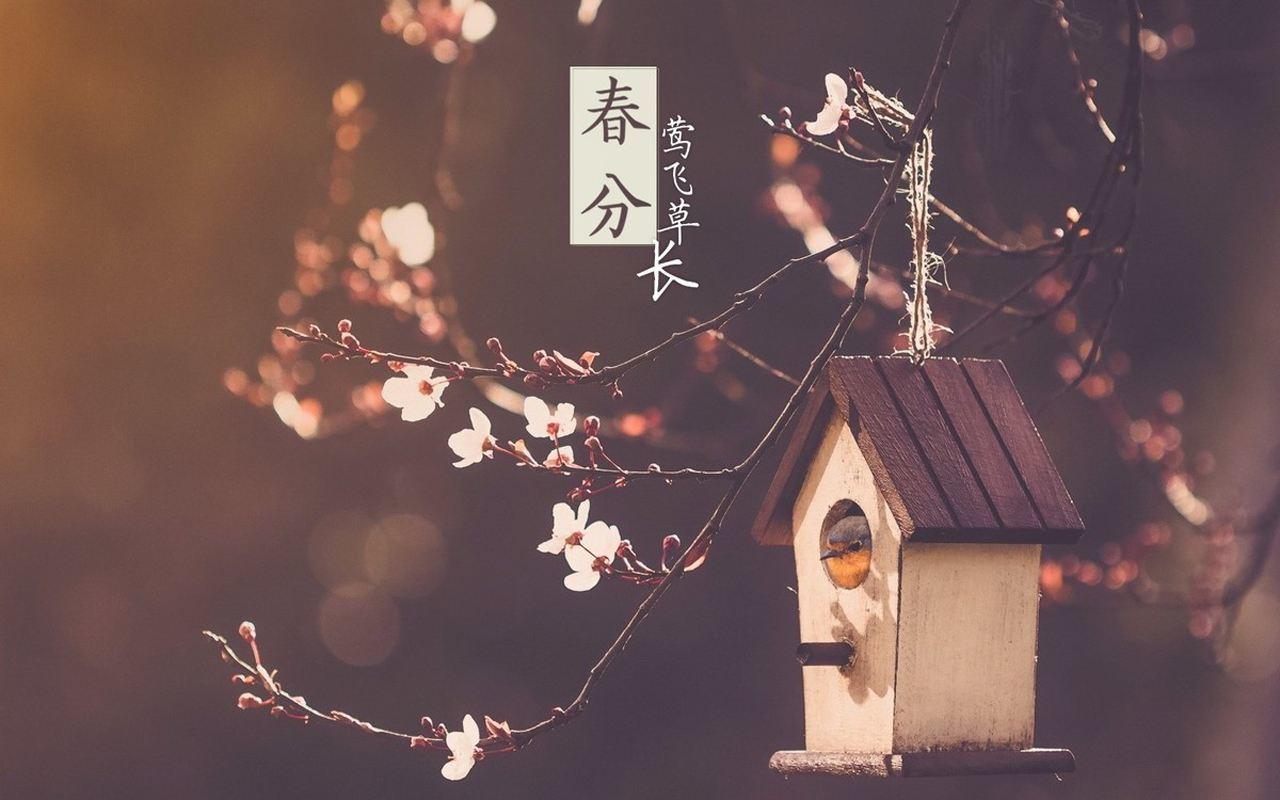 春分节气养生祝福语温馨问候送给身边的人精选