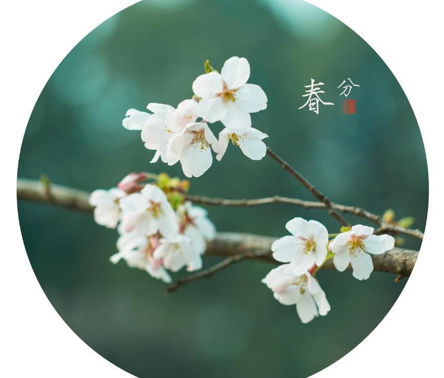 2019春分祝福语早安朋友圈问候一句话大全精选