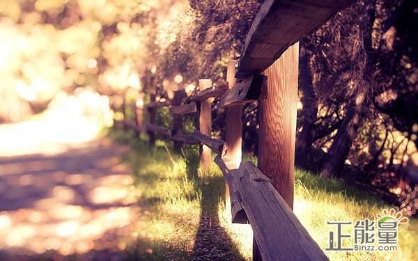 选择放弃一个人的句子心情说说:回忆总是会不自觉在心里浮现