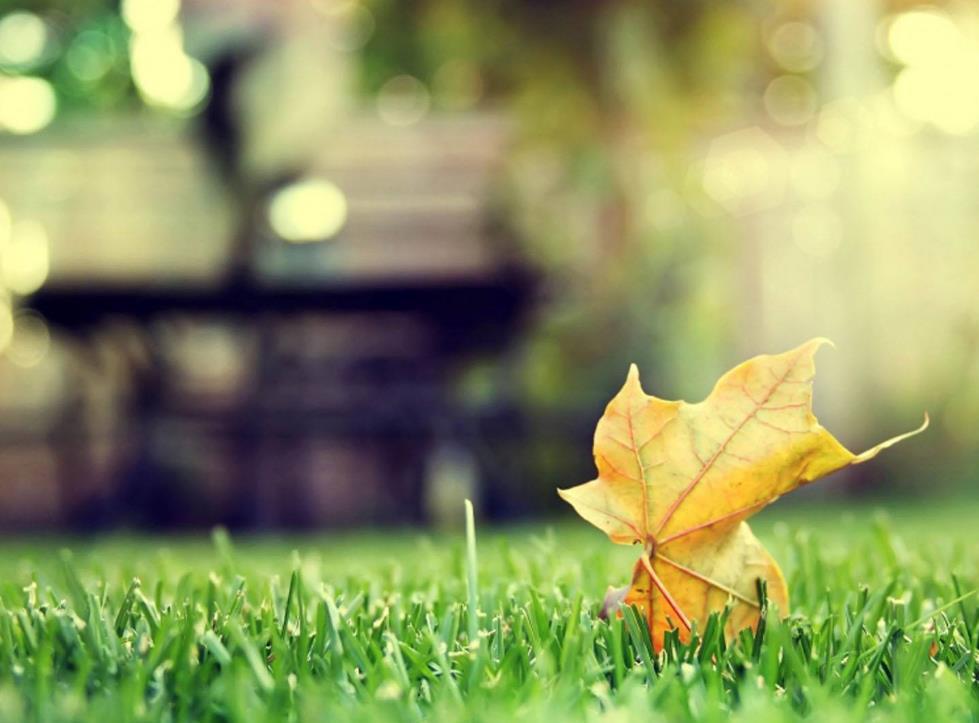 人生要为自己而活的生活感悟语录:只要不断挑战,世界总会给你让步